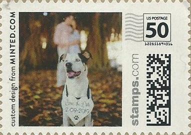 SM50a4NLdog104