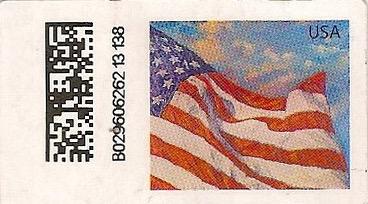 U49Hflag011