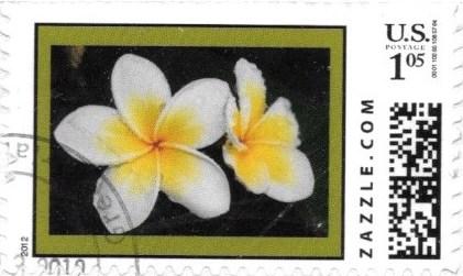 Z105HM12flower001