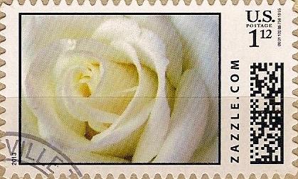 Z112HM13flower001