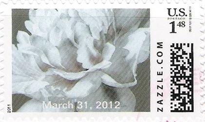 Z148HM11flower001