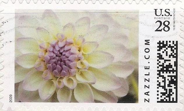Z28HM09flower001