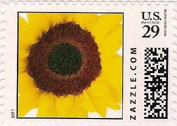 Z29HS11flower001
