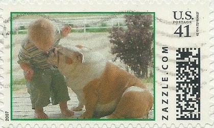 Z41HM07dog013
