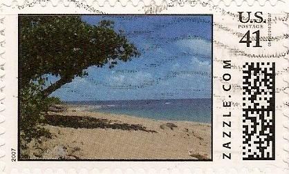 Z41HM07scene001