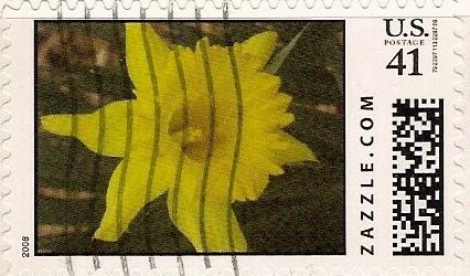 Z41HM08flower001