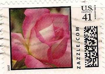 Z41HS07flower002