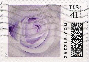 Z41HS07flower003