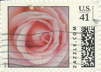 Z41HS07flower004