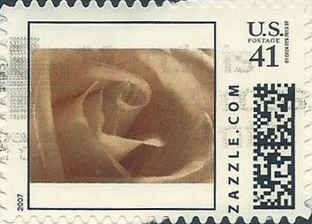 Z41HS07flower007