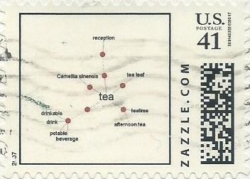 Z41HS07tea001