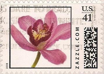 Z41HS08flower001