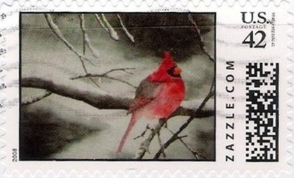 Z42HM08bird002