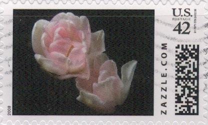 Z42HM08flower003