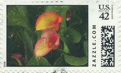 Z42HM08flower005
