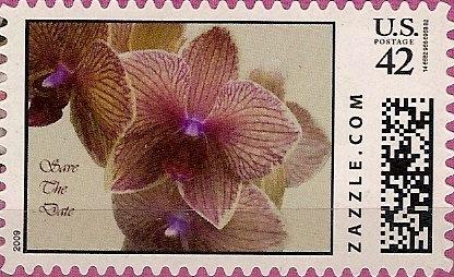 Z42HM09flower005