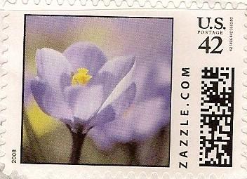 Z42HS08flower001