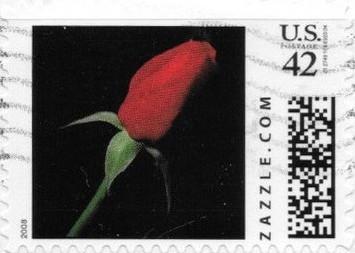 Z42HS08flower002