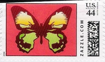 Z44HM09butterfly003