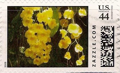 Z44HM09flower001