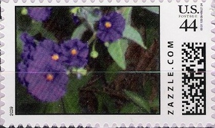 Z44HM09flower008