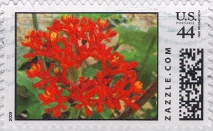 Z44HM09flower011