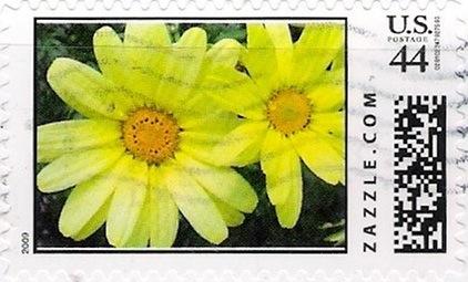 Z44HM09flower012