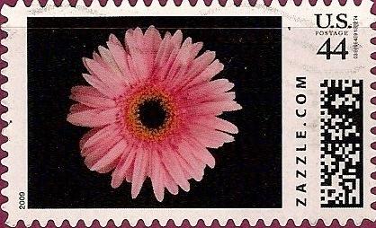 Z44HM09flower013