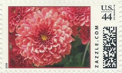 Z44HM09flower015
