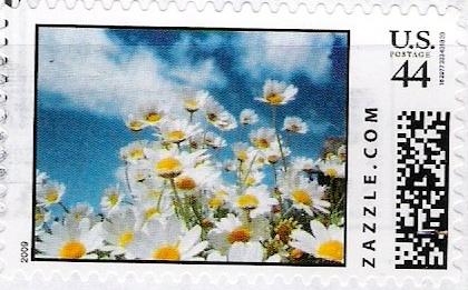 Z44HM09flower006
