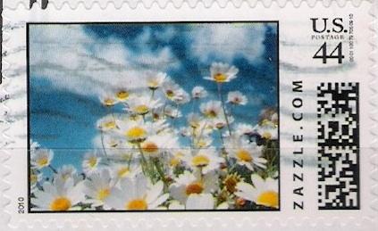 Z44HM10flower002