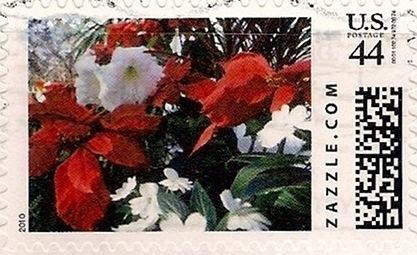 Z44HM10flower003