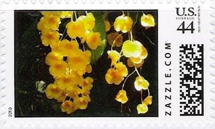 Z44HM10flower005