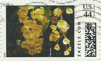 Z44HM10flower011