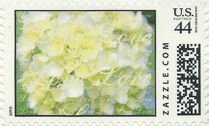 Z44HM10flower012