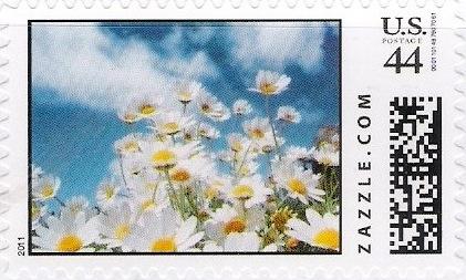 Z44HM11flower002