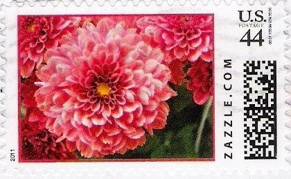 Z44HM11flower003