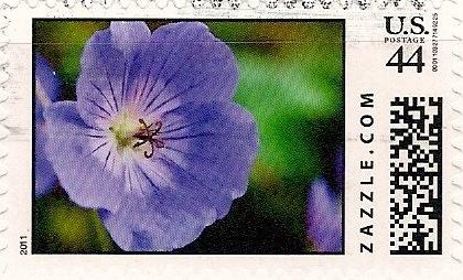 Z44HM11flower004