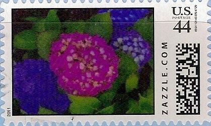 Z44HM11flower006