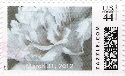 Z44HM11flower008