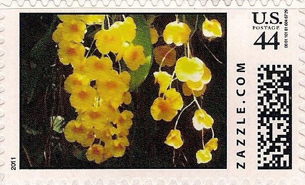 Z44HM11flower011