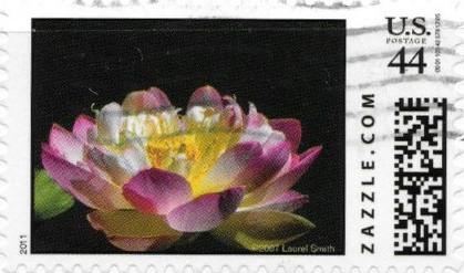Z44HM11flower012