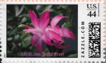 Z44HM11flower013