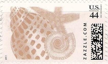 Z44HM11shells001