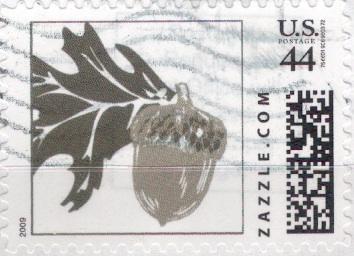 Z44HS09acorn001