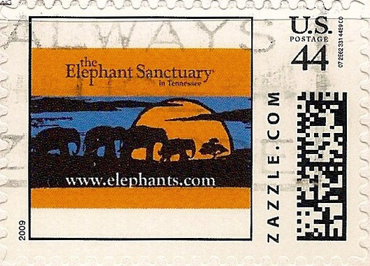 Z44HS09elephant001