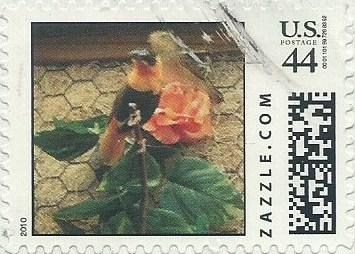 Z44HS10bird001