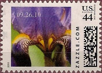 Z44HS10flower001