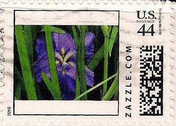 Z44HS10flower005