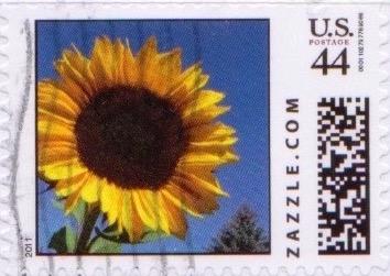 Z44HS11flower004